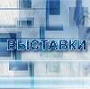 Выставки в Некрасовском